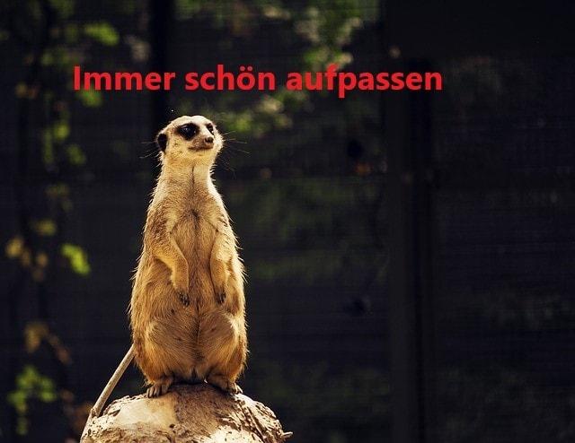 immer schön aufpassen - Spam Alarm :atemmaskekn95-de.com